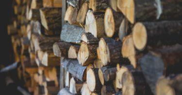 Feuerholz Brennholz